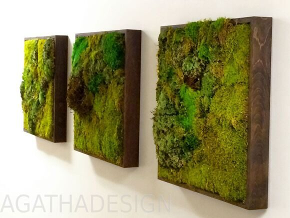 Moss-Wall-Gallery
