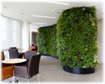 1500985848office_plant_screen